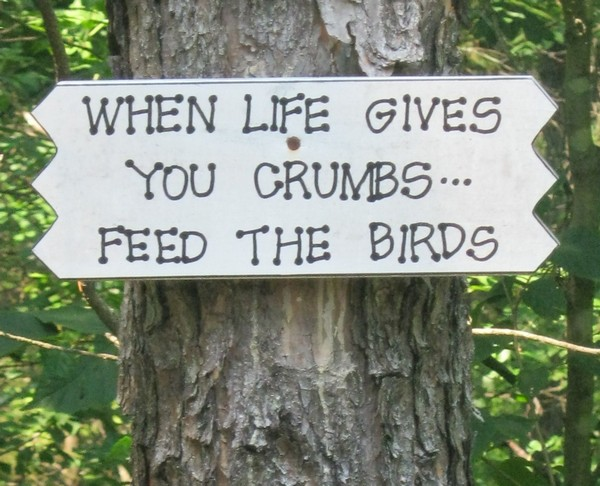 When life gives your crumbs